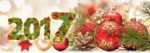Поздравление с Новым годом и Рождеством от института ИБМП